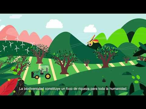 Salvemos el buen aceite y la vida en el olivar. Biodiversidad. deoleo