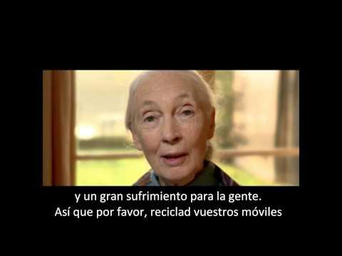 Jane Goodall habla sobre el reciclaje de móviles