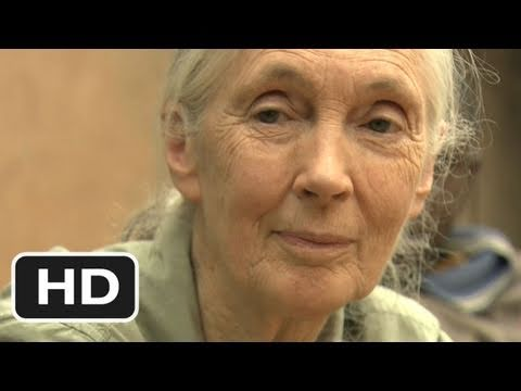 Jane's Journey (2011) HD Movie Trailer