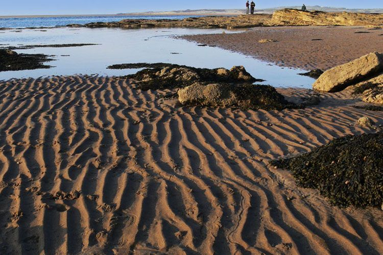 Desertización por Cambio climático