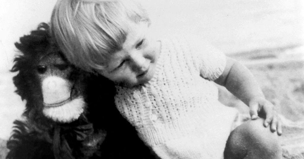 Jane Goodall Ficma