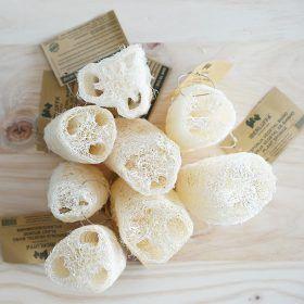luffa esponja natural vegetal