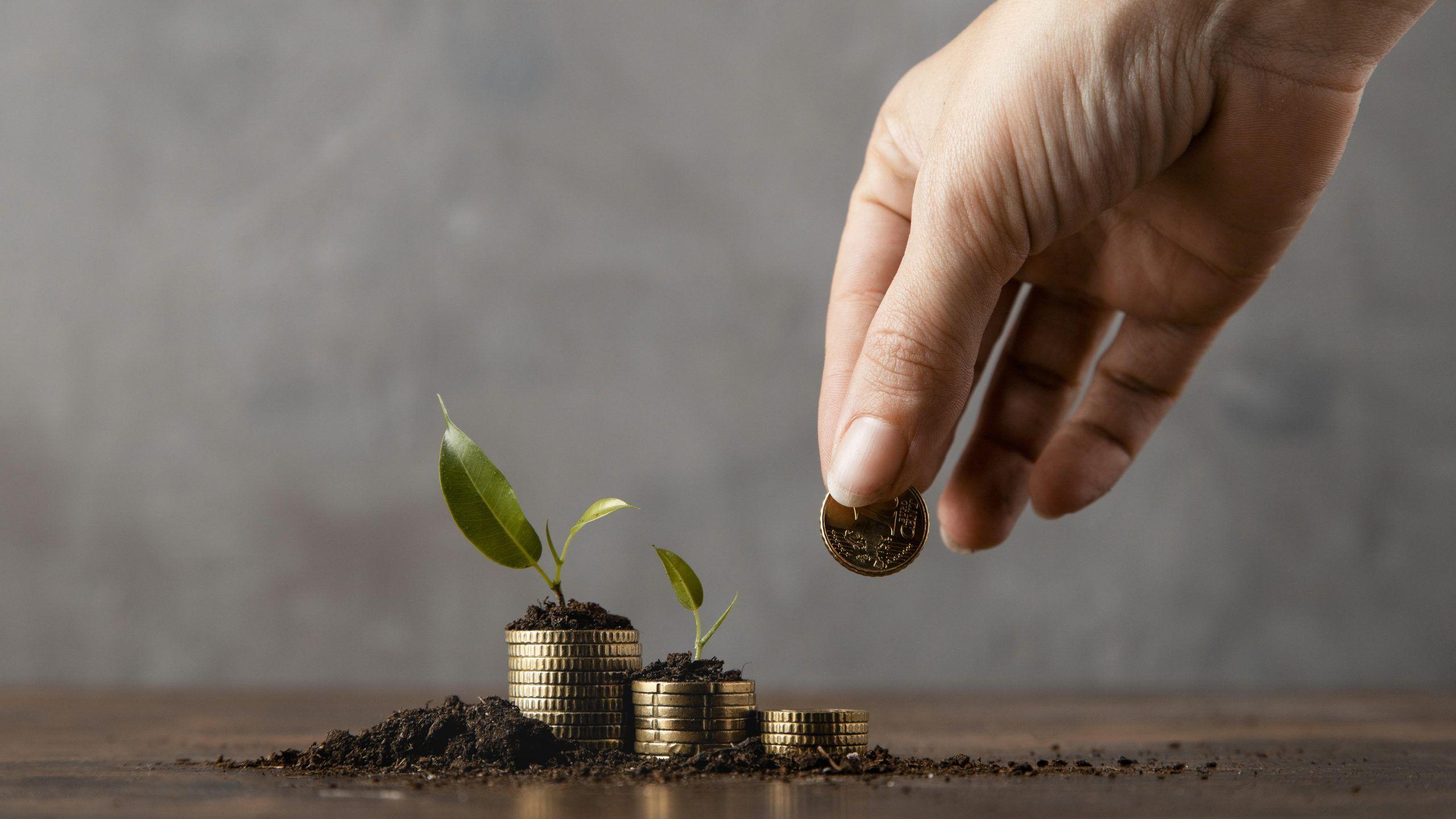 qué es la banca ética. qué son las finanzas sostenibles